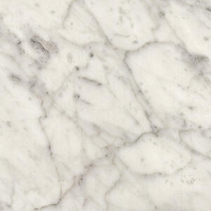 6696 Carrara Bianco swatch